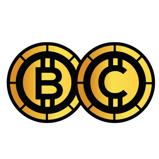 Bitcoin Cam Logo